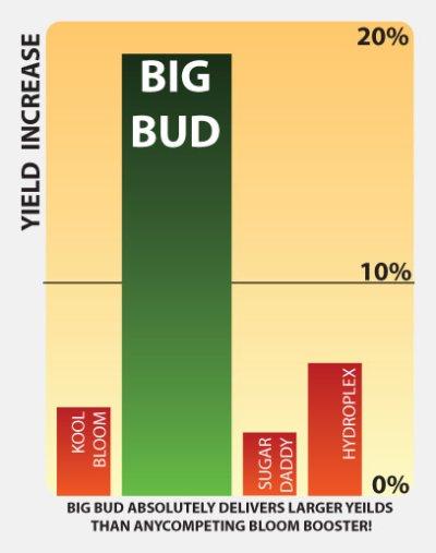 画像1: Big Bud 4L